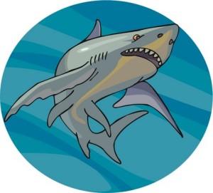 shark-swimming-image-credit-iclipart-com