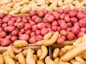 Kaikissa perunoissa on paljon kaliumia, joka on tärkeä kivennäisaine verenpaineen säätelyssä. Kaikkien perunoiden syöminen on terveellistä, vaikka amerikkalaistutkimus nostaakin punaiset lajikkeet erityisesti esille.