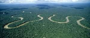 Maapallon monimuotoisimman luonnon salaisuuksia selvitetään jättitutkimuksella, jonkka auttaa myös suojelemaan sademetsää.