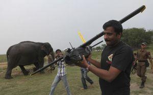 Riistanvartijat valmistelevat lennokkia valvontalennolle Kazirangan kansallispuistossa, Assamin osavaltiossa Intiassa 8.4.2013.