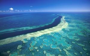 Suuri valliriutta on yksi maailman tunnetuimmista ja arvokkaimmista luontokohteista, mutta riutan tulevaisuus on paljolti  Australian hallituksen käsissä.