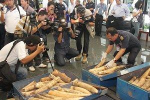 """Norsunluu on tunnetuin Thaimaassa (kuvassa) ja muualla Aasiassa tullin haaviin jäävä villielänten ja eläintuotteden ryhmä, tämä on vain """"jäävuoden huippu"""" laittomassa eläinkaupassa."""