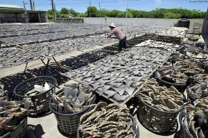 Hainevien markkinat keskittyvät Aasiaan. Vuosittain mailman meristä pyydetään noin 100 miljoonaa haita pääosin juuri evien takia.