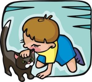 Kissojen ja koirien kanssa eläminen tuottaa lapselle paljon iloa ja hyötyä, mutta lemmikit voivat muuttua myös painajaismaisiksi allergian aiheuttajiksi. Uusien tutkimustulosten myötä toiveet tehokkaista kissa-allegian hoito- ja ehkäisykeinoista ovat  entistä realistisemmat.
