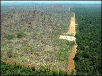 Maailman laajimman sademetsäalueen Amazonian suojeluun tähtäävä Brasilian metsälakien uudistus näyttää epäonisuenen. Vuosia jatkunut suuntaus hakkuiden vähenemisessä kääntyi uusimman tilaston mukaan jyrkkään nousuun.