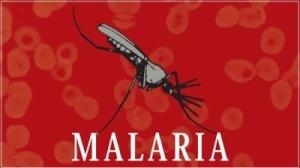 Malariavaroitukset ovat tarpeen monilla seuduilla, joilta ilmaston viileys on aikaisemmin pitänyt kuumetautia levittävät moskiitot loitolla.
