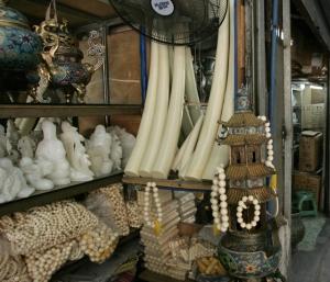 Kiina on ylivoimaisesti suurin norsunluun ostaja ja kuluttaja. Norsunluun kansainvälinen kauppa on pääosin kiellettyä, mutta kansallinen kauppa on sallittua kiinassa, ja jättivaltiossa on noin 150 virallista norsunluumyymälää. Sallittua norsunluuta yleisempääo n kuitenkin salametsästyksellä hankittu laiton norsunluu.