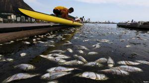 Tulevien kesäolympialaisten soutu- ja melontastadionin vesillä harjoittelevat urheilijat joutuvat todistamaan kisavesien saastuneisuuden kielteisimpiä ominaisuuksia.