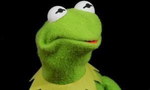 Kermit-sammakko, Kermit the Frog.
