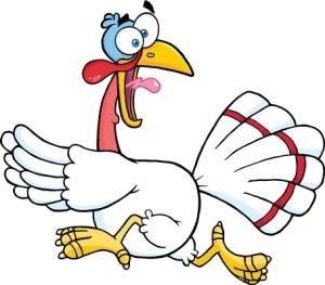 Miljoonan kalkkunan pakkoteurastukseen Yhdysvalloissa johtanut H5N2-lintuinfluenssa on tappavan vaarallinen linnuille, mutta onneksi ei ihmisille.