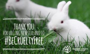 Uuden-Seelannin kuluttaja- ja eläinsuojelujärjestöt ovat jo vuosia kampanjoineet eläinsuojelulain kiristämisen puolesta.