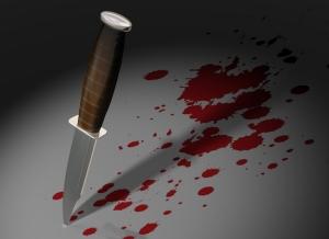 Turkkilainen tuomari otti jyrkän kannan murhaan, jossa kissa-uhrin puukottamisesta langetettiin vuosien vankeusrangaistus.