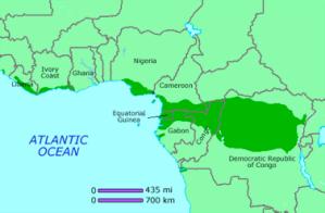 Keskisen Afrikan sademetsävyöhyke jakautuu kuuden valtion alueille.