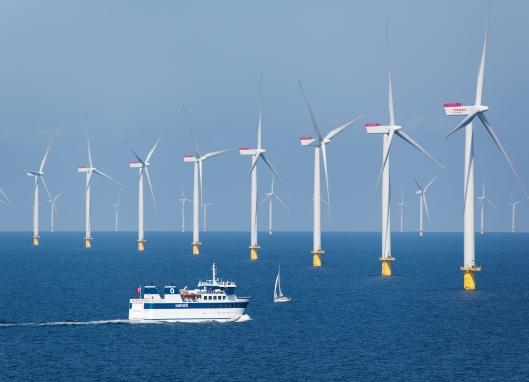 Anholtin tuulivoimapuisto on Tanskan sähköntuotannon kulmakiviä. Voimalassa on kaikkiaan 111 nimellisteholtaan 3.6 megawatin roottoriyksikköä, eli voimapuiston kokonaisteho on 400 megawattia.