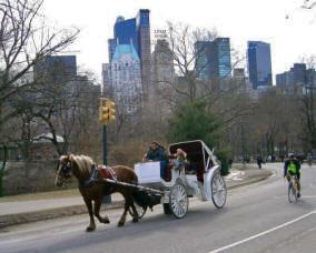 New Yorkin kuuluisat hevosvaljakot saavat jatkossa liikkua vain Keskuspuistossa, ja valjakkojen määrää rajoitetaan voimakkaasti. Kuvalähde: Greenwich Mean Time.co.
