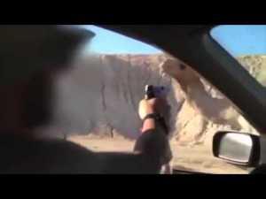 Vapaa-ajallaan kamelin auton ikkunasta ampumalla tappanut sotilas tuomitiin neljäksi kuukaudeksi vankeuteen. Kuva: YouTube.