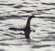 Tunnetuin Nessie-havainto, valokuva vuodelta 1934 on sittemmin paljastettu väärennökseksi. Kuva: en.wikipedia.org.