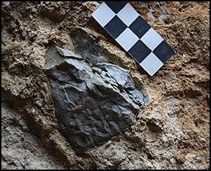 Espanjalaisesta luolasta löydetyissä kivissä on selviä merkkejä tulen vaikutuksesta. Ruudukkomittakaavan neliön sivun pituus n 1 senttimetri. Kuva: M.J. Walker et al., Murcia university. Antiquity, June 2016.