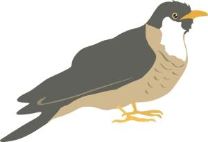 Käkikellon lintu kertoo täsmällisesti ajasta, mutta myös luonnon käkienku kunta voi olla tärkeä osoittaja sekä muille linnuille että ihmisille. Kuva: iclipart.com.