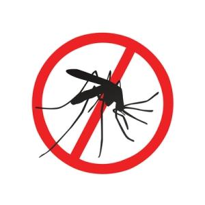 Moskiitto on maailman vaarallisin eläin, jonka pysäyttäminen myrkyillä on epävarmaa sekä mulle luonnolle haitallista. Geenimuunneltujen koiraiden avulla tautia levittävien Aedes aegypti -moskiittojen määrät – ja samalla tautien leviäminen – voitaisiin saada kuriin. Kuva: iclipart.com.