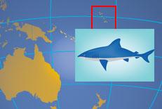 Kiribatin tasavallan sijainti Tyynellämerellä. Kartta: nationsonline.com, Haikuva: clipart.com.