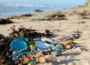 Myönteisestä kehityksestä huolimatta merenrantojen roskaantuminen on yhä vaarallisen yleistä. Kuva: Natasha Ewins.