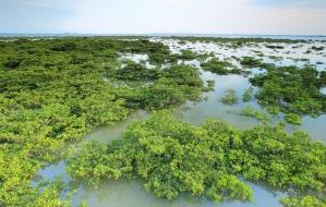 Kosteikot kattavat noin 5.6 prosenttia Kiinan maa-alasta. Monet arvokkaimmat kiinalaiskosteikot on liitetty kansainväliseen Ramsar-kosteikkojensuojeluohjelmaan. Kuva: Ramsar.org.
