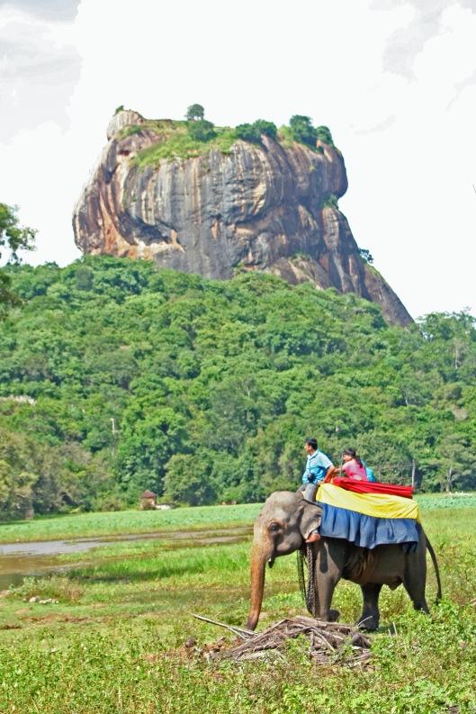 Matkanjärjestäjien ja paikallisten toimijoiden on taattava, että eläinten hyvinvointia kunnioitetaan luontomatkailussa. Norsuratsastus. Sigiria, Sri Lanka. Kuva: Kai Aulio.