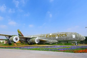 A380-slentokoneen malliin laadittuun asetelmaan tarvittiin 500 000 kukkaa, ja lisäksi Emirates-yhtön tunnuksessa on 900 eri väristä kukkaa. Kuva: TradeArabia.