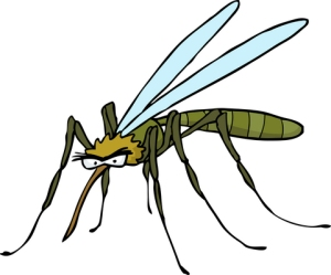 Vaarallisia tartuntatauteja aiheuttavien flavivirusten kantajahyttysiä ja -moskiittoja on luonnossa kymmeniä lajeja. Kuva: iclipart.com.